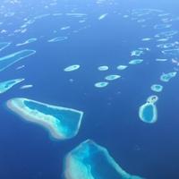 reisebericht tauchen und schnorcheln im nord male atoll auf den malediven. Black Bedroom Furniture Sets. Home Design Ideas